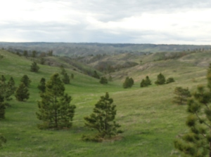 The Smiley Canyon Scenic Area