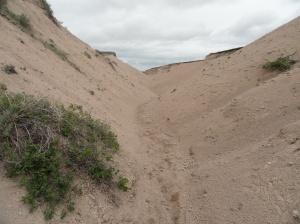 Arroyos at Toadstool Geologic park